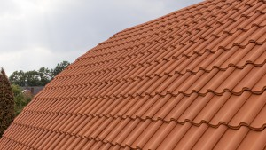 Architekturfotografie: gewölbtes Dach   Foto: Dieter Eikenberg, imprints