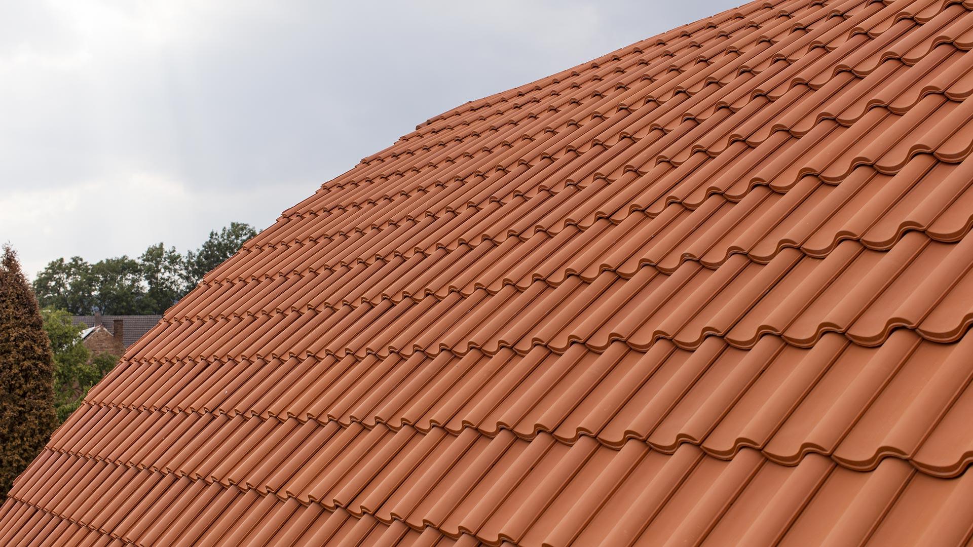Architekturfotografie: gewölbtes Dach | Foto: Dieter Eikenberg, imprints