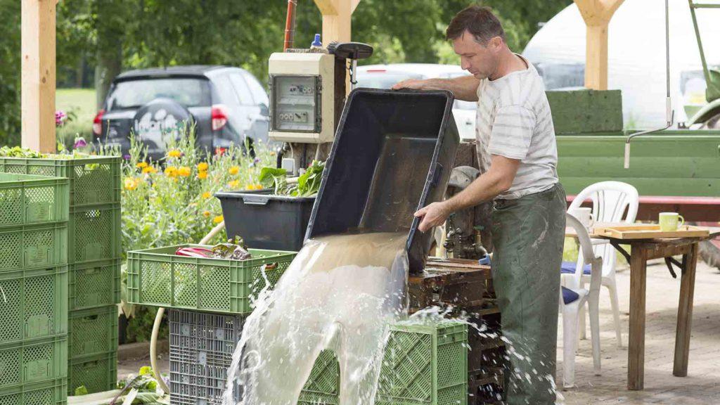 Unternehmensporträt Biohof, Fotos aus der Arbeitswelt: Gemüse waschen | Foto: Dieter Eikenberg, imprints