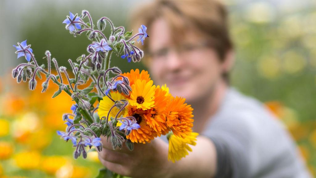 Unternehmensporträt Biohof, Fotos aus der Arbeitswelt: Blüten für die Pfanne | Foto: Dieter Eikenberg, imprints