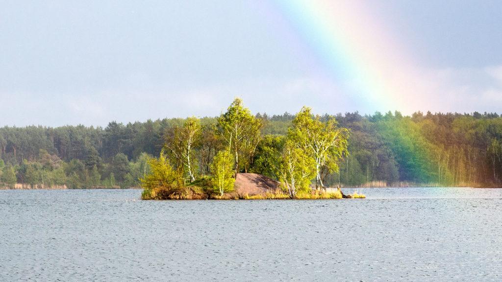 Landschaftsfotografie: Bergwitzsee, Insel mit Regenbogen   Foto: Dieter Eikenberg, imprints