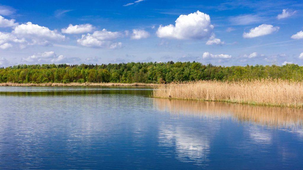 Landschaftsfotografie: Bergwitzsee | Foto: Dieter Eikenberg, imprints