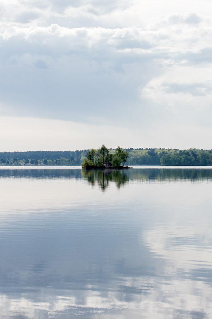 Landschaftsfotografie: Insel im Mondlicht am Bergwitzsee   Foto: Dieter Eikenberg, imprints
