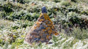 Landschaftsfotografie: Bretagne – Dach im Farn | Foto: Dieter Eikenberg, imprints