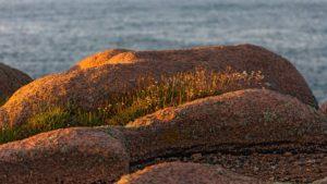 Landschaftsfotografie: Côte de Granit Rose – Küste des rosa Granits | Foto: Dieter Eikenberg, imprints