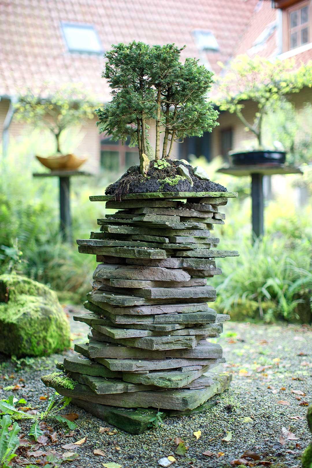 Architekturfotografie: Bonsai vor Immobilie | Foto: Dieter Eikenberg, imprints