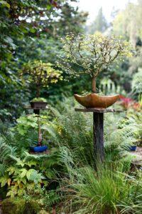 Architekturfotografie: Bonsai im Garten   Foto: Dieter Eikenberg, imprints