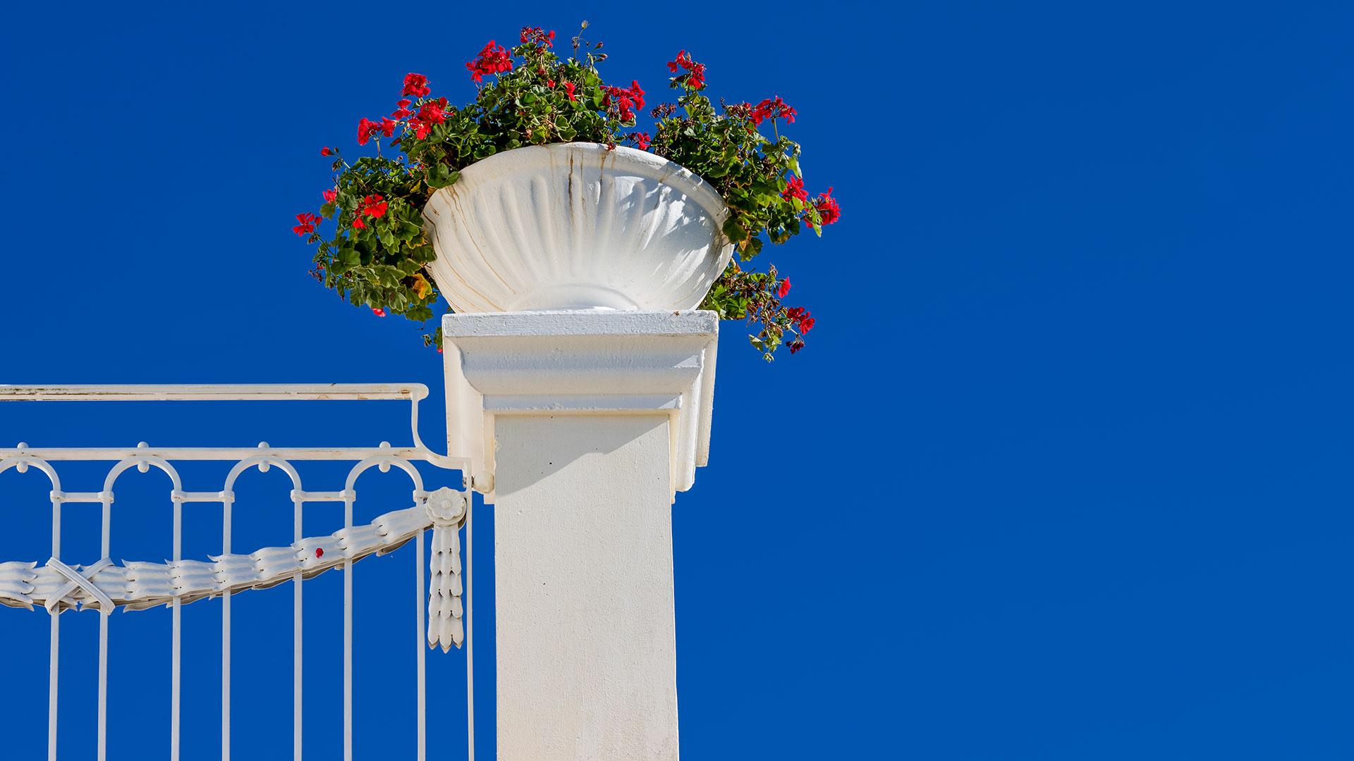 Architekturfotografie: Blumentopf Terrasse | Foto: Dieter Eikenberg, imprints