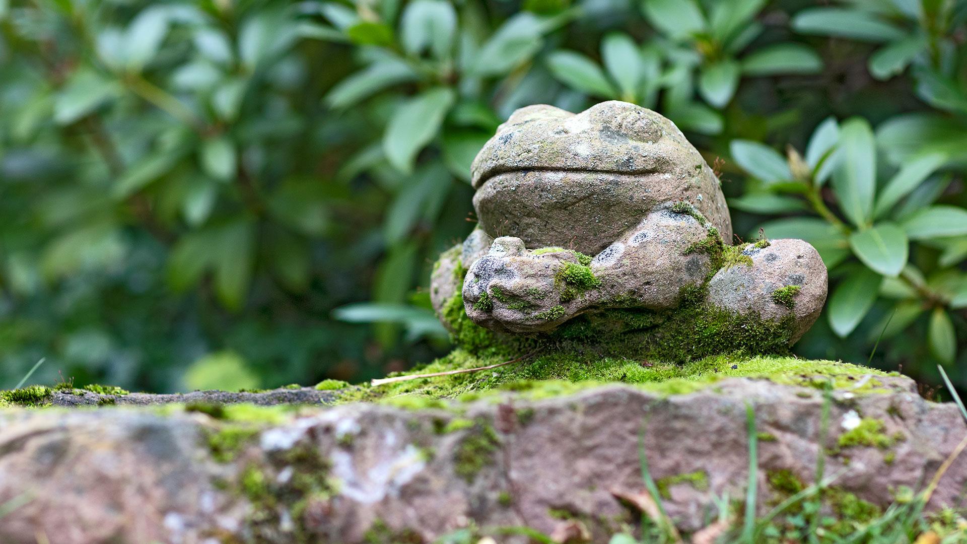 Architekturfotografie: Frosch Skulptur | Foto: Dieter Eikenberg, imprints