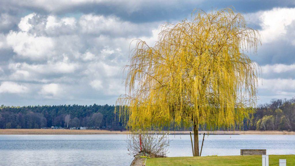 Landschaftsfotografie: Rheinsberg, Hafendorf – Ausblick | Foto: Dieter Eikenberg, imprints