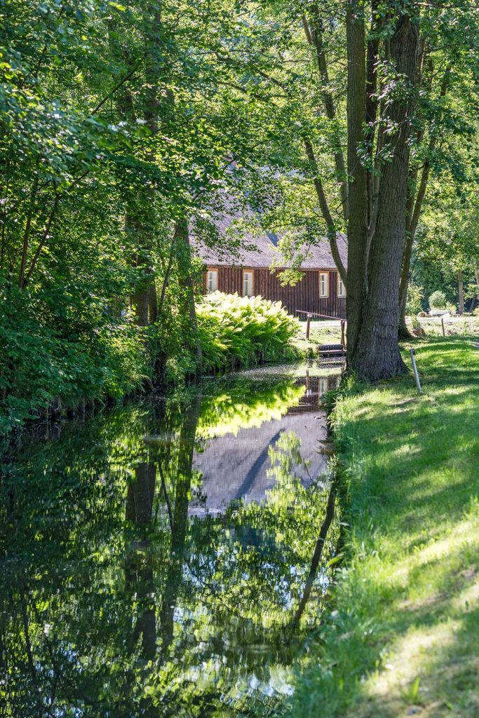 Landschaftsfotografie: Spreewald, Leipe | Foto: Dieter Eikenberg, imprints