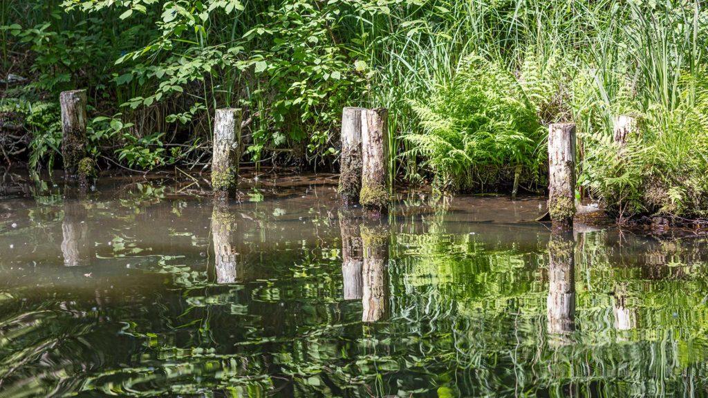 Landschaftsfotografie: Spreewald | Foto: Dieter Eikenberg, imprints
