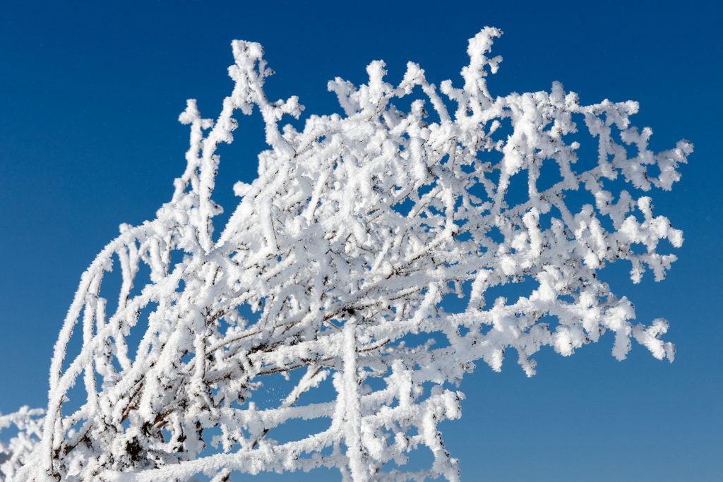 Winterliche Kunstwerke